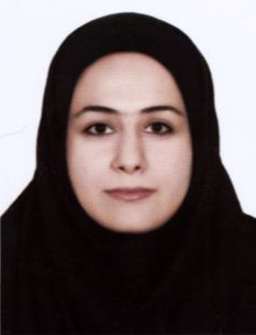 Dr. Atefe Amirahmadi