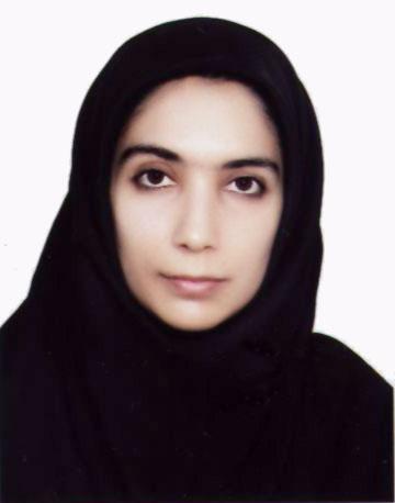 S.Hamideh Erfani