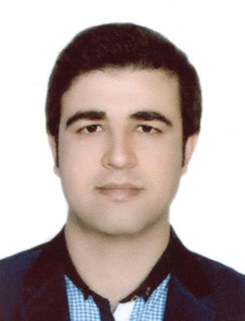 Dr Amin Navidtalab